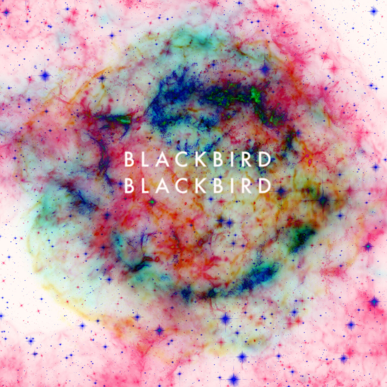 Blackbird Blackbird, este sábado en Madrid