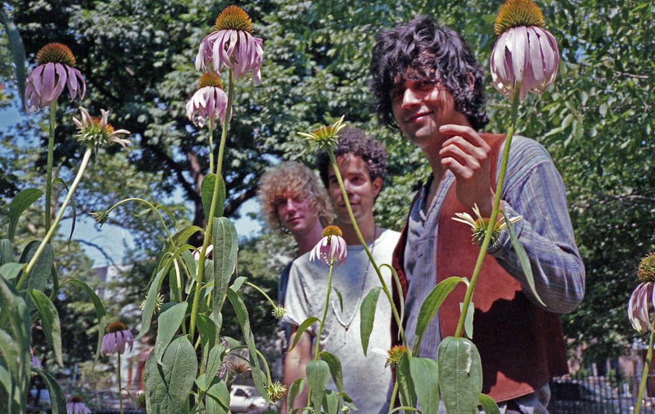 Banda de la semana: Las Rosas