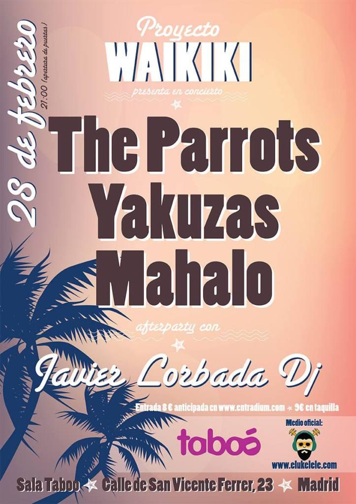 proyecto-wakiki-parrots