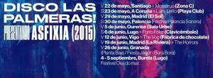 disco-palmeras-2015