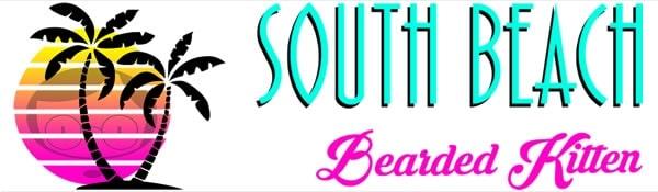 south-beach-bearded-kitten