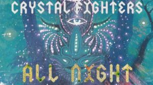crystal fighters all night