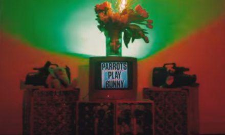 """The Parrots reinventan """"Soy Peor"""" de Bad Bunny"""