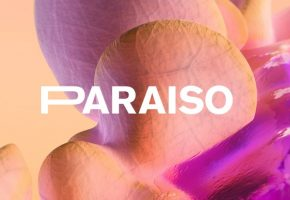 Paraíso Festival 2021 - Rumores, confirmaciones, cartel y entradas