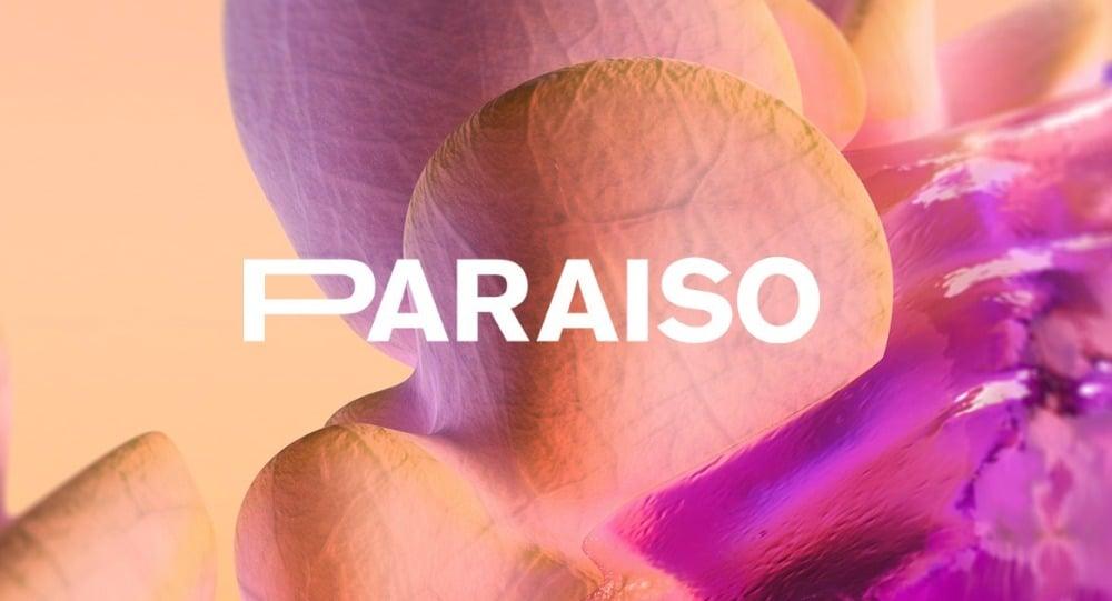 Paraíso Festival 2021 – Rumores, confirmaciones, cartel y entradas